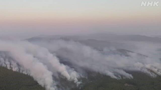 Rozległe pożary lasów w południowej Turcji: 7 osób zabitych, 860 rannych
