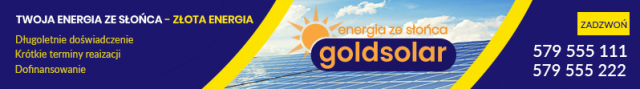 goldsolar.pl